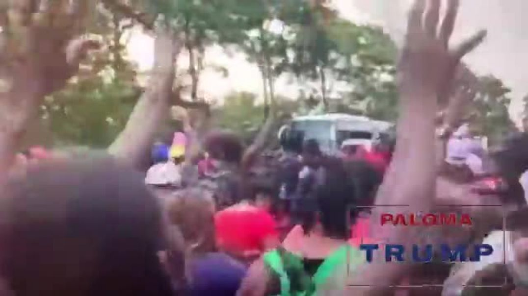 invasion Currently happening at Mexico's Southern Border Paloma For Trump